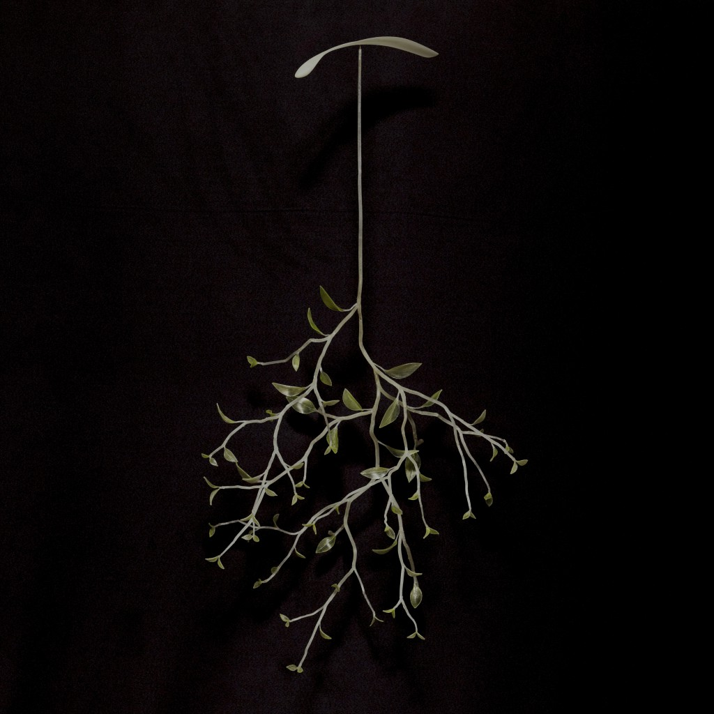 im-plantarum bio-plastics